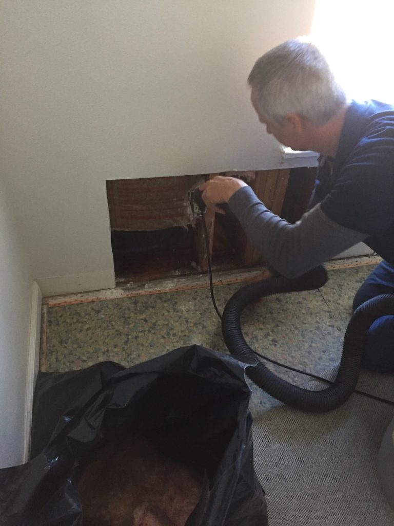 lincoln-city-water-damage-8-768x1024